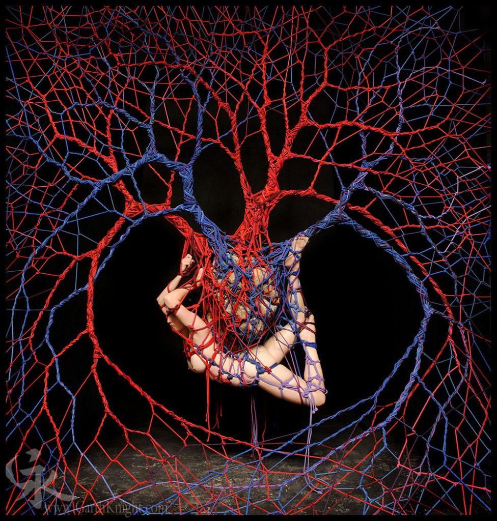 Blood Consciousness 6, Pieta. Garth Knight, 2013